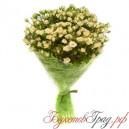 Букет из 19 кремовых кустовых роз